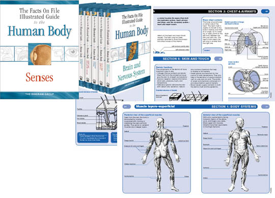 The Facts on File Illustrated Guide to the Human Body, Brain and Nervous System